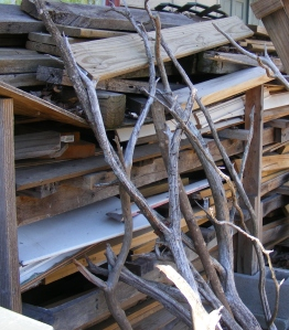 My woodpile is a beautiful mess!  Those cedar limbs will someday become an end-table for my living room.